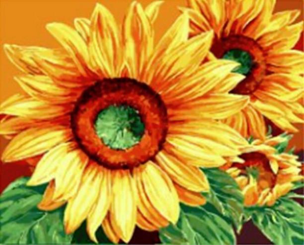 Gaira Malování podle čísel Slunečnice M991819